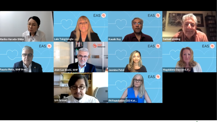 FH Roundtable: Next steps after the Global Call to Action on FH